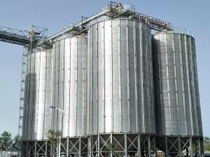 Henan Maidao Noodle Industry 6-700 tons 7
