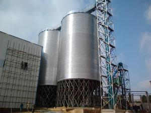 Zambian Giesia Agriculture - 1000 Tons